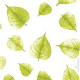 Cellophane: L1 Leaves, Lime Green